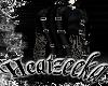 (HZ) Absinth Goth Coat