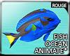 |2' Ocean Fish II
