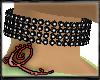 !QQ Black Collar Miss