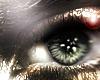 BD* Glaze M/F Eyes