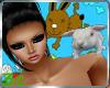 [3c] Rabbit Pet