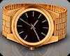 Dz Watch Gold