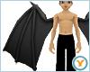Fld Dragon Wings: Black