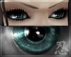忍 Jia Chong Eyes