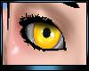 M * Angelic Eye Fem