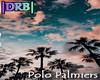  DRB  Polo Palmiers