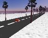 BEACH   + CAR RACE