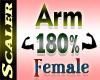 Arm Resizer 180%