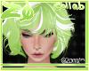 Pistachii | Hair