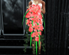Red Rose / Lillie Boquet