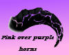 +Pink over Purple Horns+