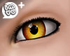 IMVU+ M Eye Gld 0