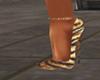 Cocio Tiger Shoes 1