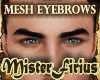 Mesh Eyebrows Black