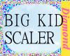 ~M~BIG KID SCALER 70%