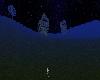Night Camp Ground