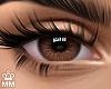 Cutie - Brown 1