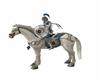 O'Donoghue white horse