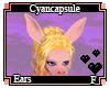 Cyancapsule Ears