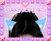 Purrfect | Cyan Ears