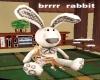 brrrr rabbit