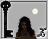 *SX* Orbiting Moon
