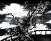 Dark Unholy Tree