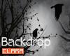 © Dark Raven Backdrop