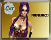 ~CAT~ Purple Becci