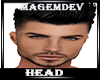 HEAD#5