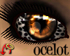 Wild.Eyes Ocelot (f)
