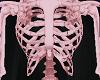 Skeleton v5