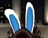 ~A~ Bunny Ears Blue