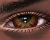 B! Comp Eyes x