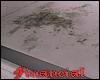 Unhygienic Mold