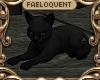 F:~ Witch's Black Cat