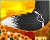 ♡ Binx  | Tail 2.0