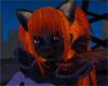 Phoenix tails [F]