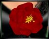 (WW)RED ROSE LARGE