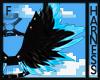 Black & Blue Harness V1