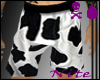 -NS- Cow Boxers