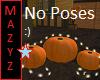 No Poses Pumpkins Lights