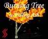 Burning Treew/FallingAsh