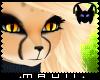 🎧 K.Cheetah Hair F2