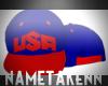 |NT|USA Olympic SnapBack