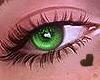 Bellos Eyes 2