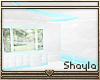 ~S~ Shiny Room