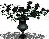 ⛧ Black Rose Vase