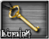 [*L] Gold Ant Key Ncklce