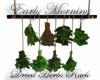 !V! Dried Herbs Rack
